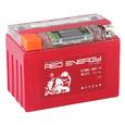 Аккумулятор мото Red Energy DS/RE12-11 12V11Ah  (Гелевый) (YTZ12S, YTZ14S )