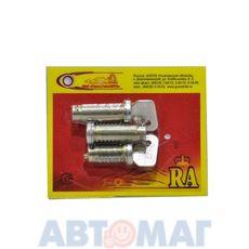 Вставки дверей ВАЗ 2102/04 Димитровград (комплект)